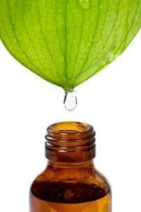 leaf oil drop