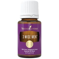 3 Wise Men 3426