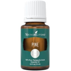Pine Essential Oil - 15 ml