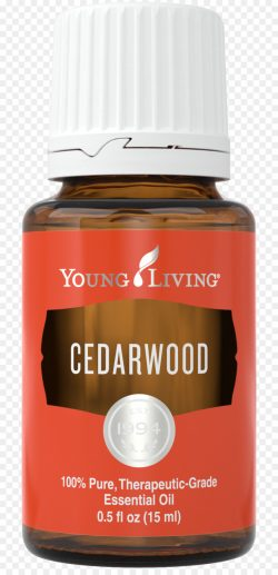 Cedarwood Essential Oil #3509