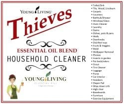 Thieves Household Cleaner List