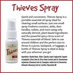 Thieves-Spray