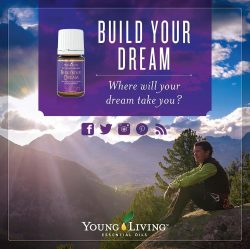 Build Your Dream Oil Blend # 4834