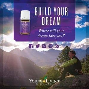 Build Your Dream Blend 4834