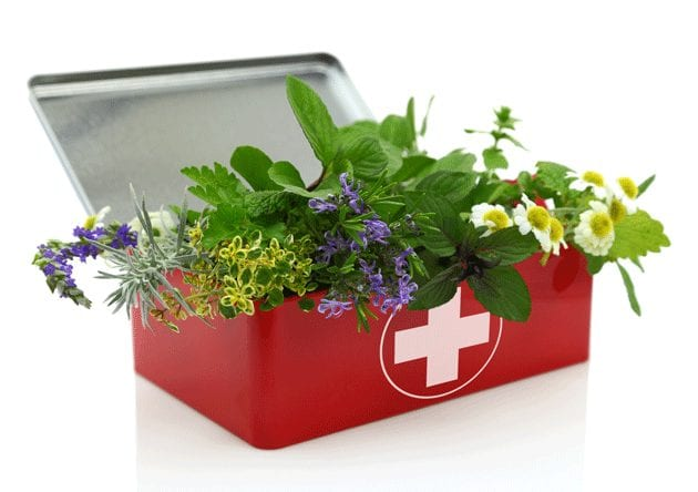 First-Aid Box with live herbs