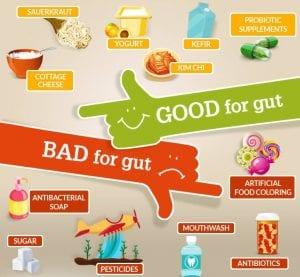 Images showing foods good and bad for your gut