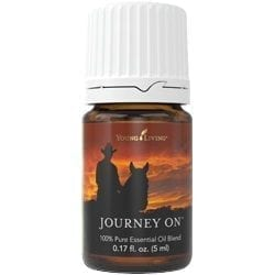 Journey On Blend 25121
