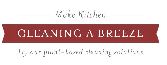DIY Kitchen Cleaning